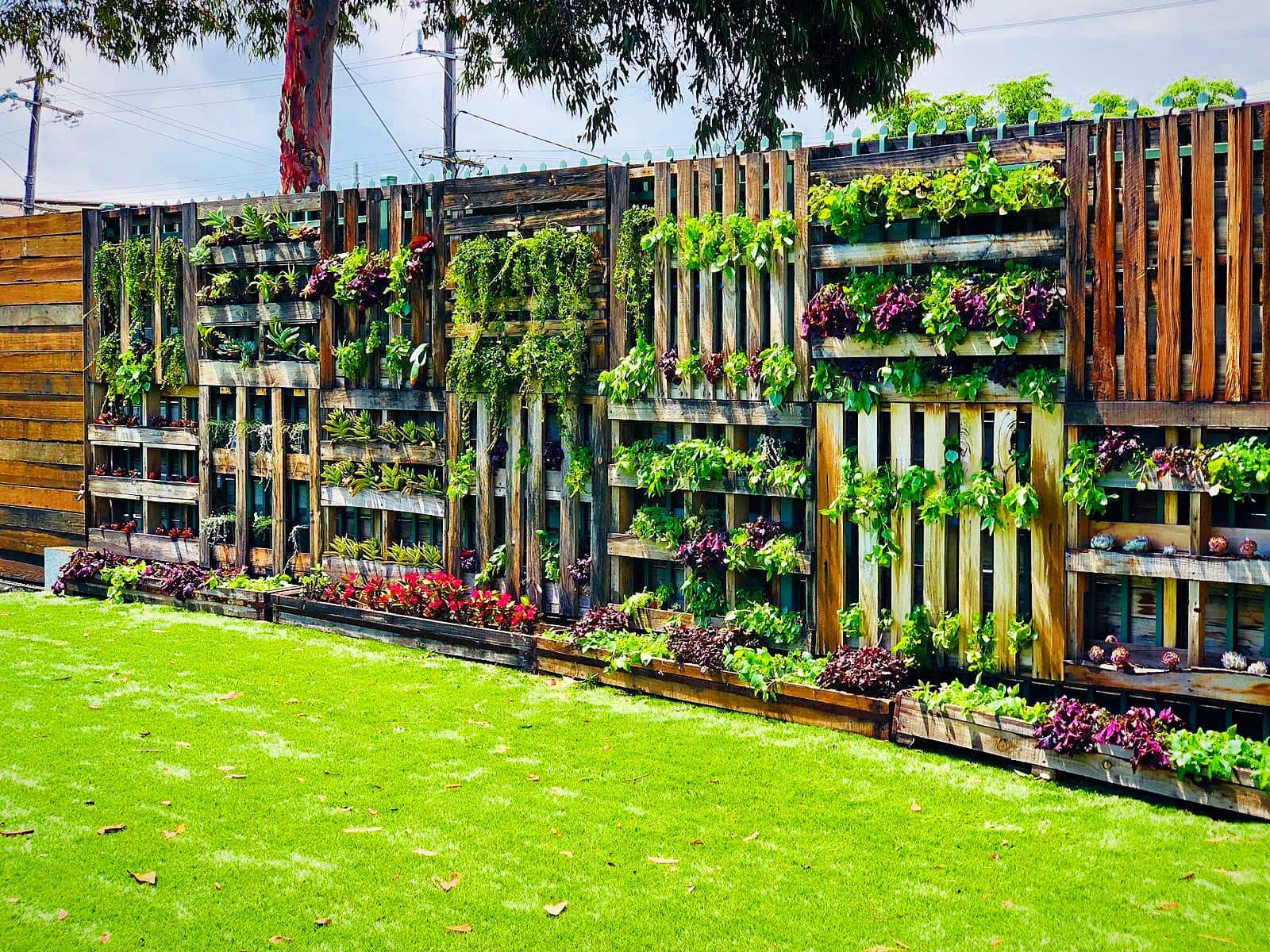 the-timber-yard-melbourne-event-space-vertical-garden